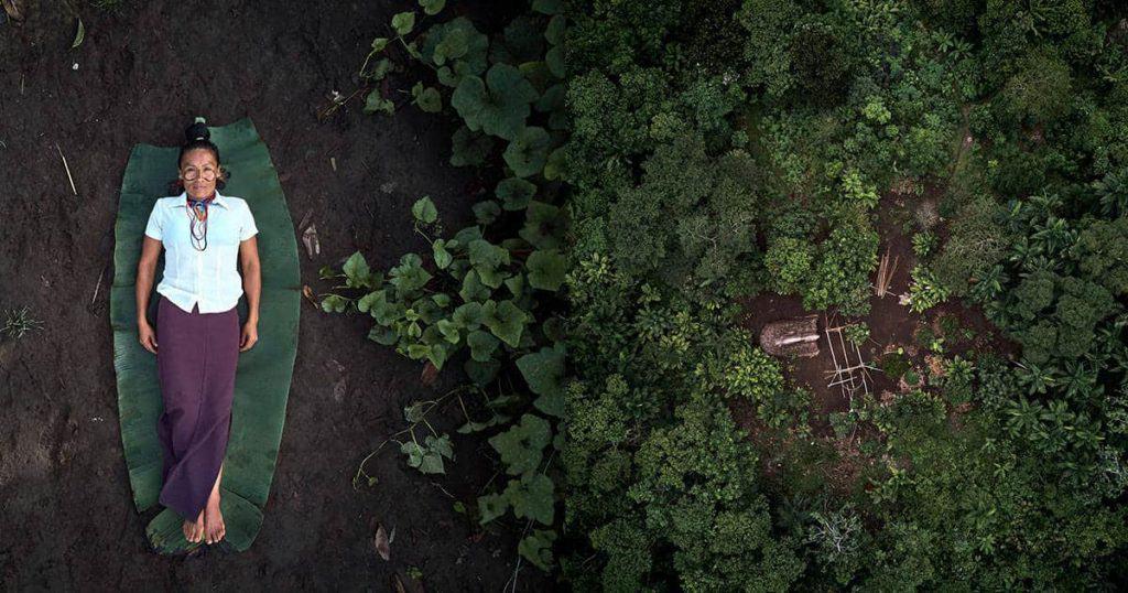rainforest defenders 01