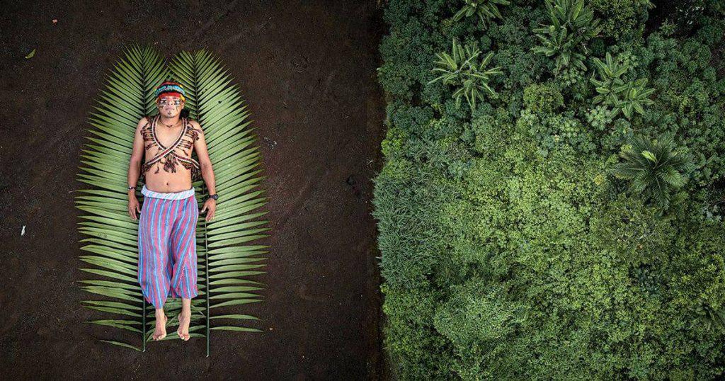 rainforest defenders 02