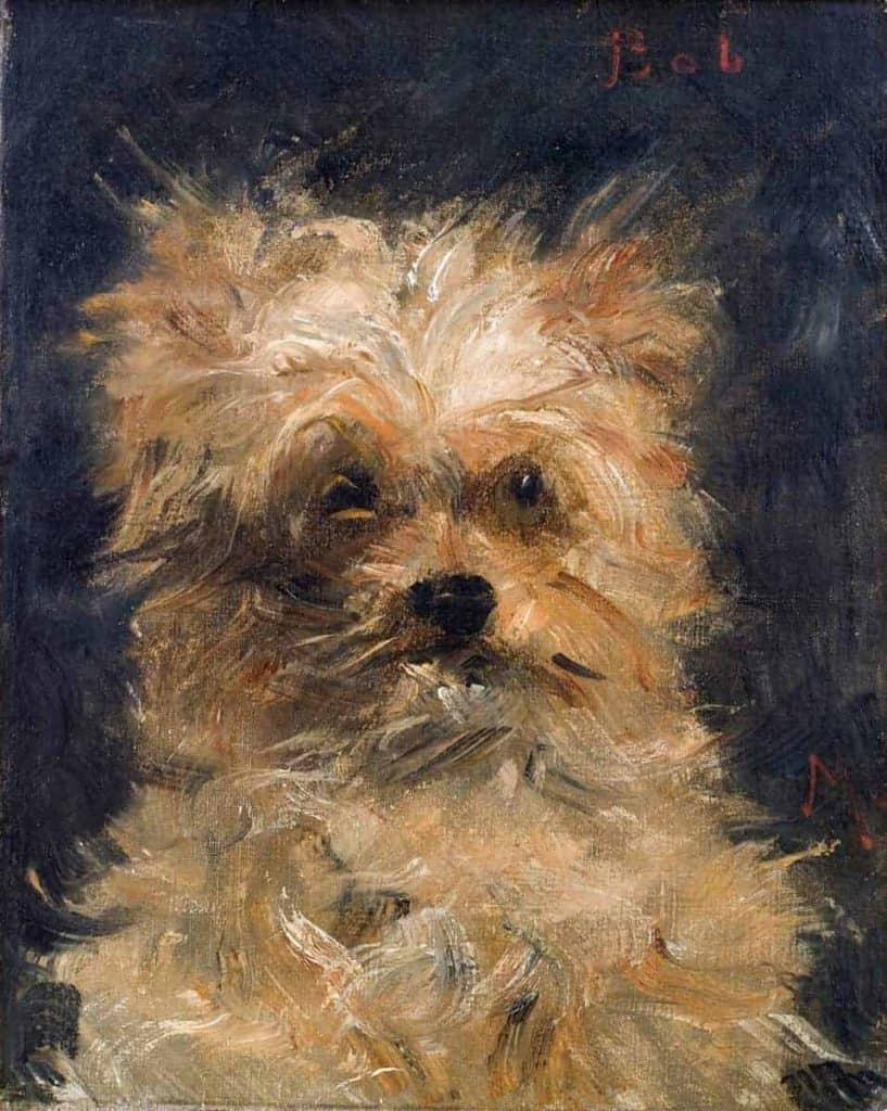 Cabeza de perro de Manet